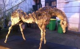 La Confidentielle #2 YIA Art Fair