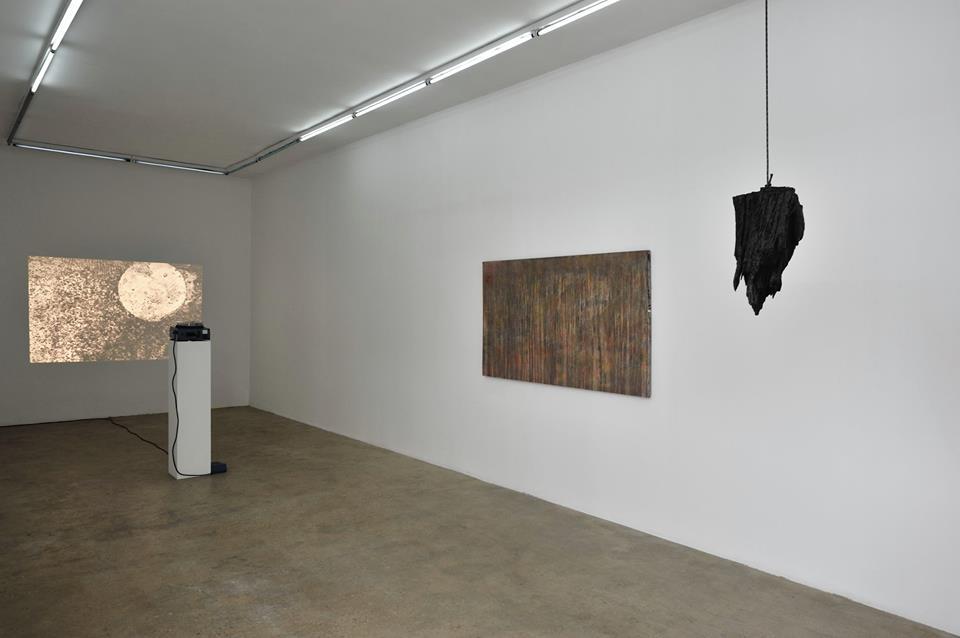 Matthieu Blanchard, Apoptose, galerie Samy Abraham