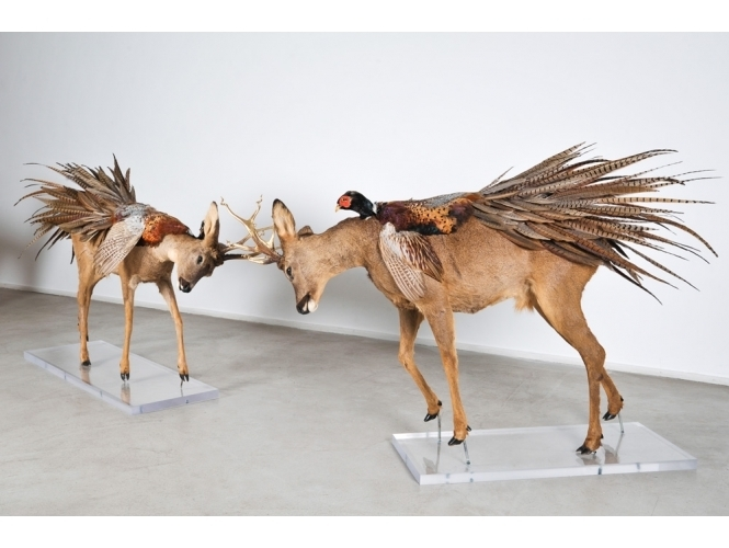 Julien Salaud, Metamorphic, galerie Suzanne Tarasieve Paris