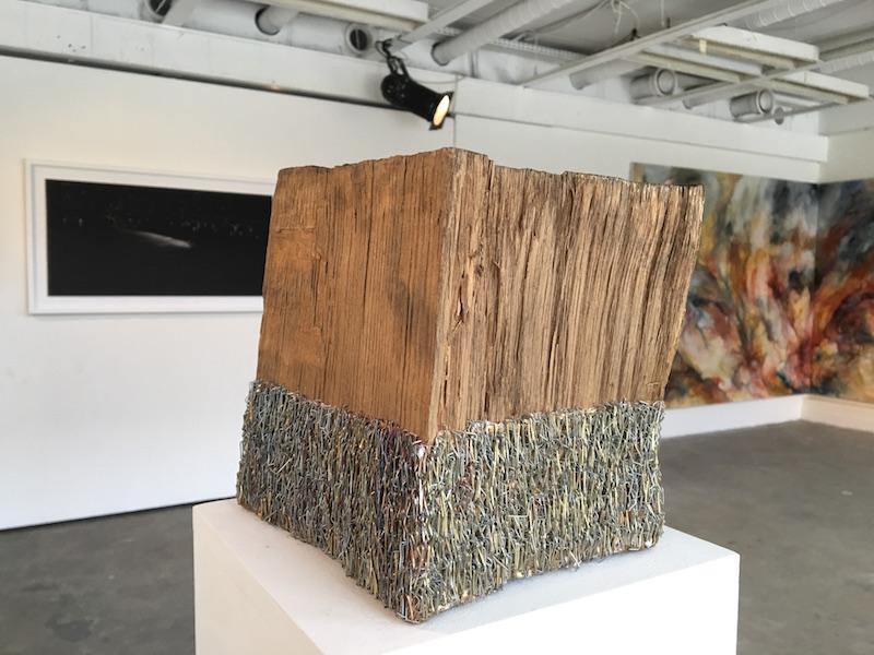 Isabelle Ferreira (au premier plan) - Photo Point contemporain
