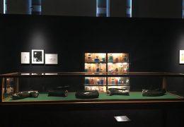 Mark Dion, Museum d'Histoire Naturelle, Palais Longchamp Marseille