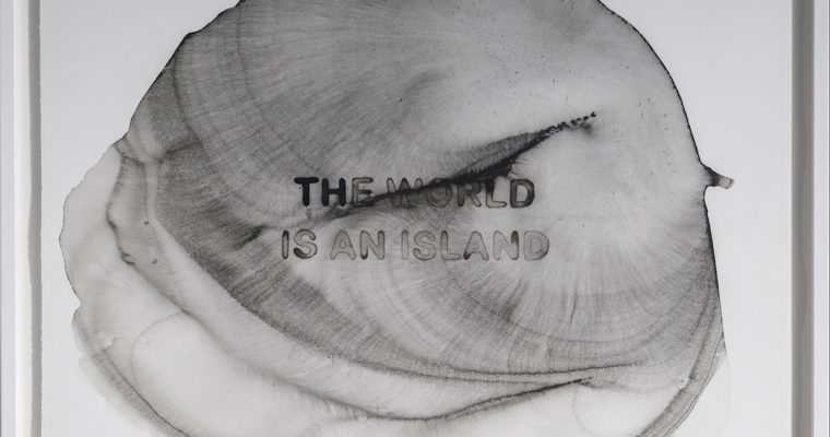 Thomas Tronel-Gauthier, The world is an island, Galerie 22,48m2 [EN DIRECT DE L'EXPOSITION]