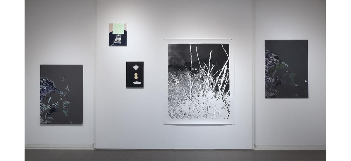 Plasmes, Julie Bonnaud et Fabien Leplae