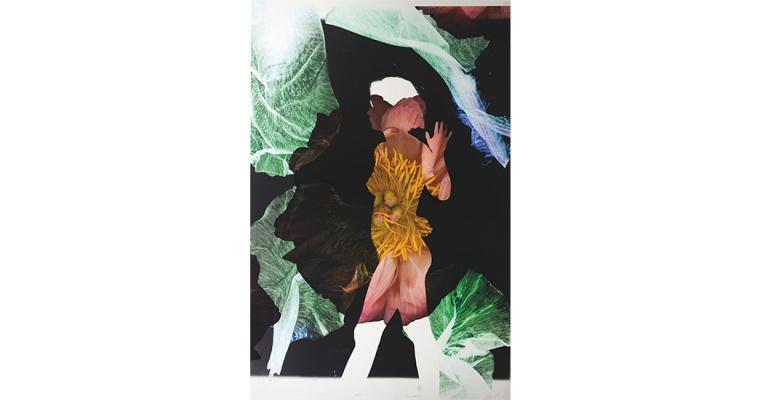 Baptiste Rabichon, 17ème, 2018. Épreuve chromogène unique 195 x 127 cm. Courtesy artiste et Galerie Paris-Beijing