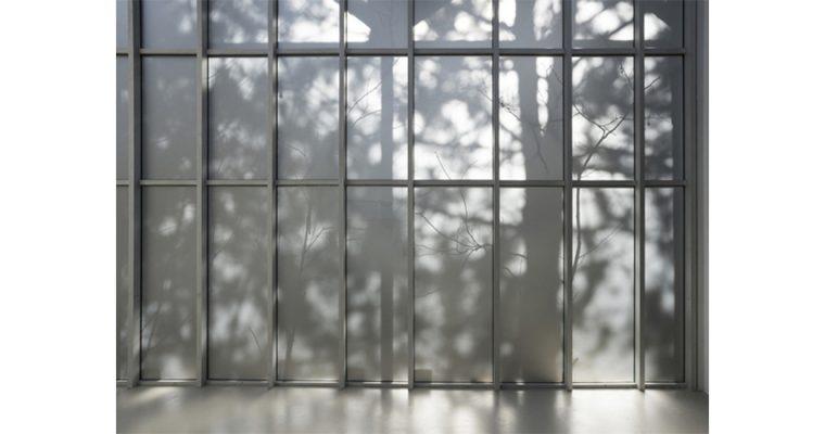 Daniel Steegmann Mangrané, Ne voulais prendre ni forme, ni chair, ni matière, Institut d'art contemporain, Villeurbanne