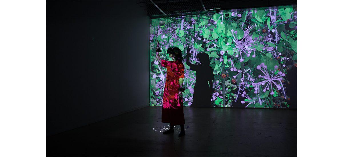 Pastor/Placzek : Entre art digital et design spéculatif
