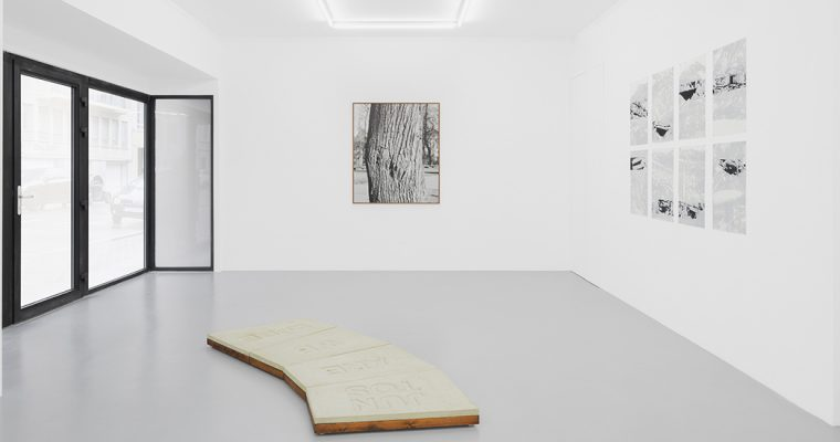 RESILIENCE, AN APTITUDE, IRENE LAUB GALLERY BRUSSELS